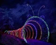 IBEW Sponsors Garden Of Lights Caterpillar